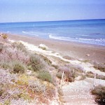 Kiti beach in late summer